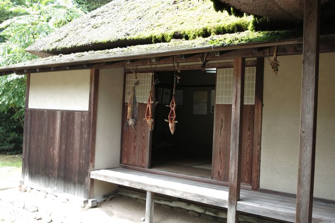 新潟北部の古都巡りや笹川流れ観光に最適の宿泊地