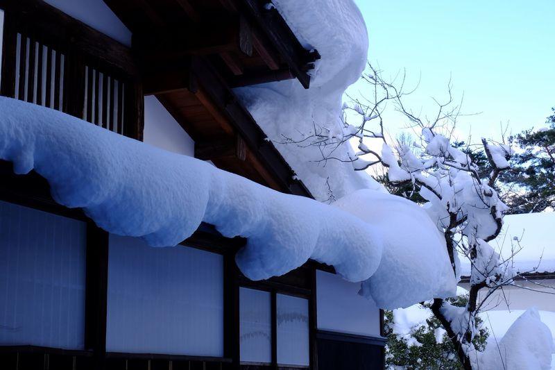 冬の厳しい美しさも春の桜も格別、四季それぞれに魅力あふれるたたずまい