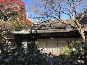 上野散策のおすすめ!水月ホテル鴎外荘で「舞姫ランチ」