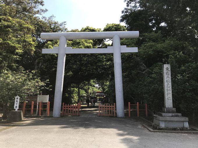 息栖神社で「忍潮井(おしおい)」の水パワーに触れる