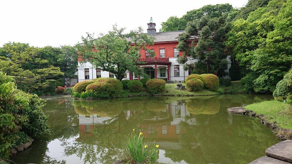 森林浴と建物巡りが面白い!歴史ある東京「小石川植物園」