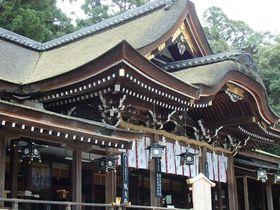 万葉集にも詠われた奈良「山の辺の道」の3時間散策はいかが!