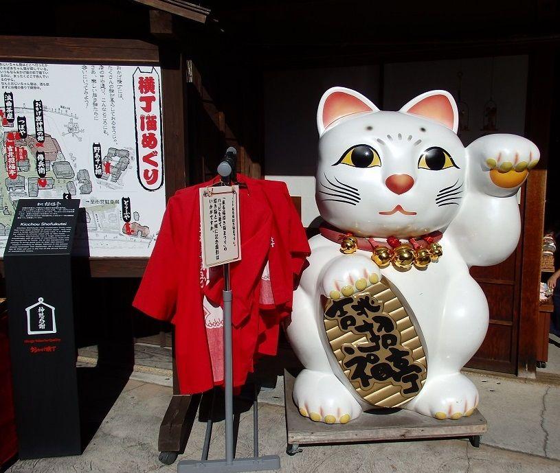 おかげ横丁の猫たちはユーモアたっぷり