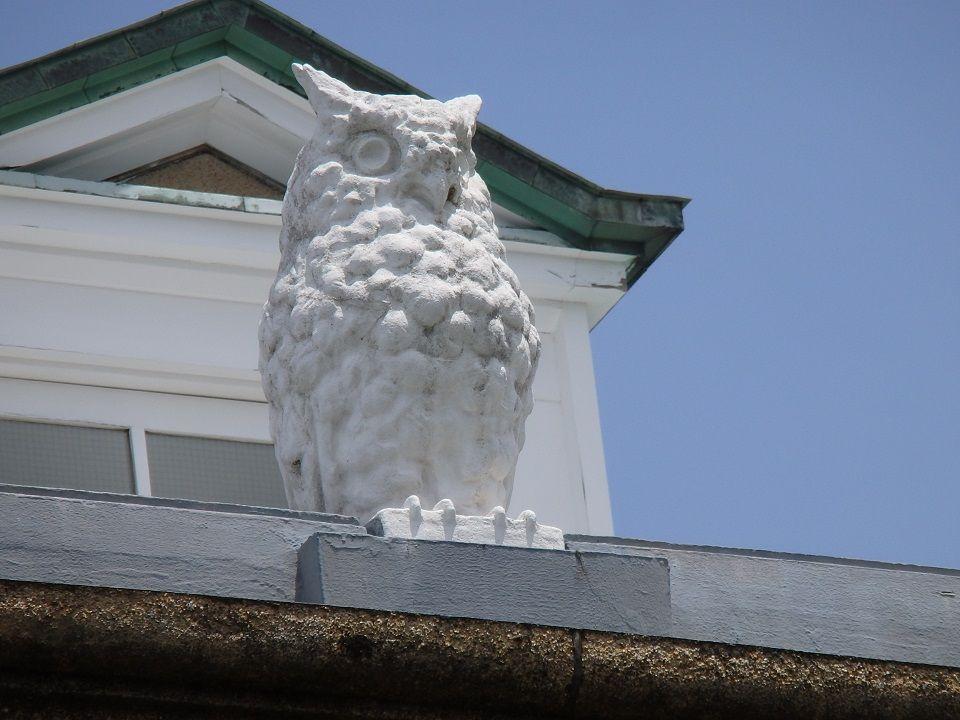 音羽御殿と称された鳩山邸