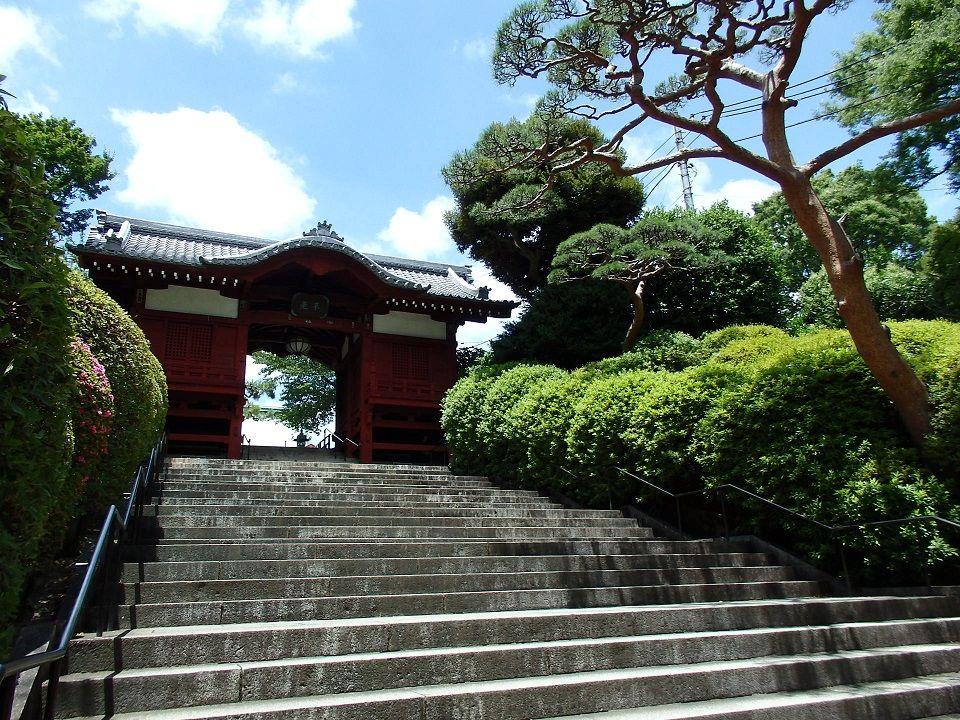 江戸時代の面影を伝える護国寺