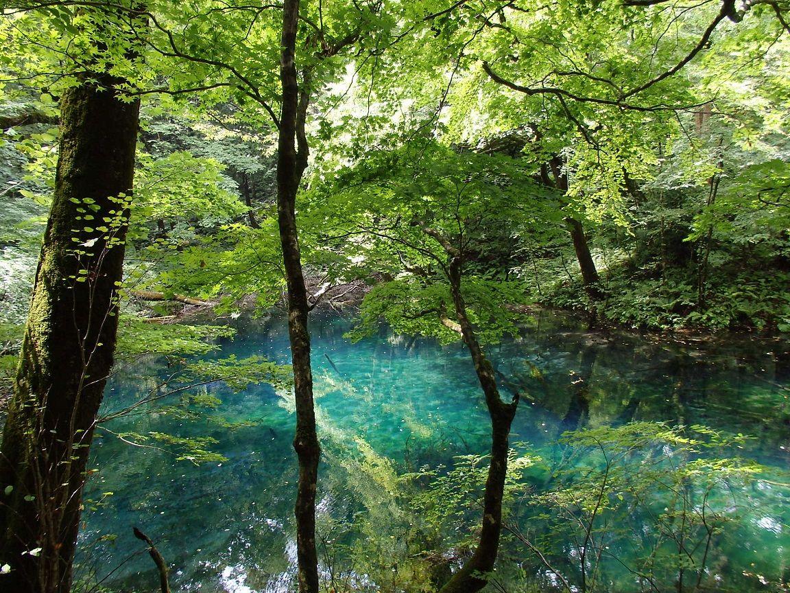 青池に勝るとも劣らない美しさの沸壺の池