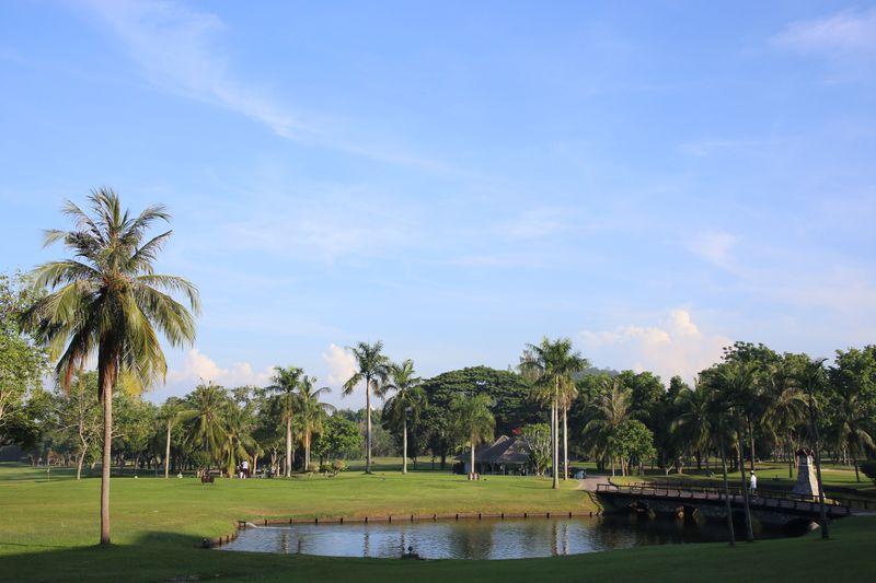 タイで猿と一緒にラウンド!?動物たちが見守るバンプラゴルフクラブ