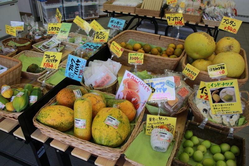 南国フルーツの宝庫!JA農産物直売所が面白い