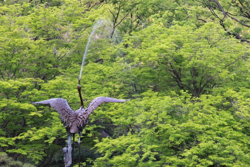 新緑を舞う、日本を代表する鳥