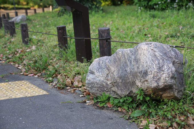 さりげなく置かれている「南極の石」