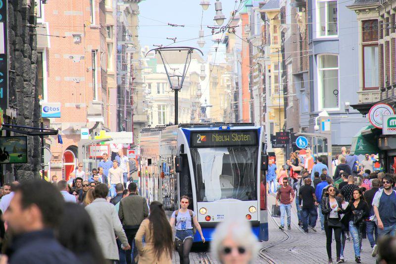 路面電車と一緒に歩ける!?オランダ・アムステルダム「ライツェ通り」