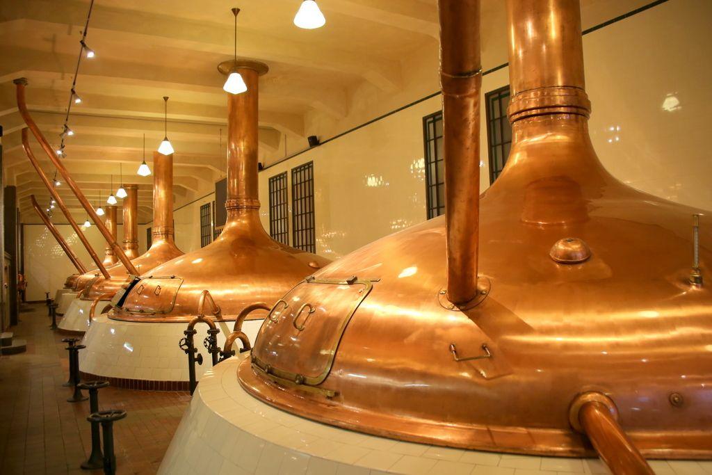 ビールの原料、醸造過程が分かりやすく展示
