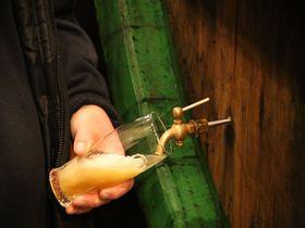 チェコを代表するビール工場を見学!ピルゼン「ピルスナー・ウルケル」