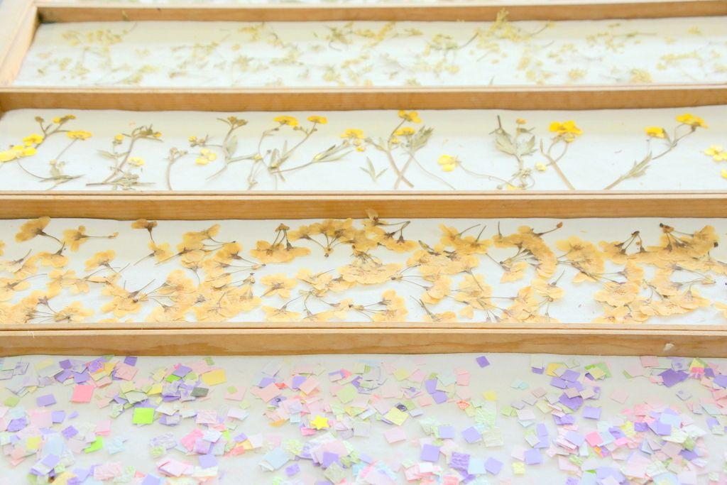 和紙って1500年も前からあったの!?福井「越前和紙の里」で知る魅力