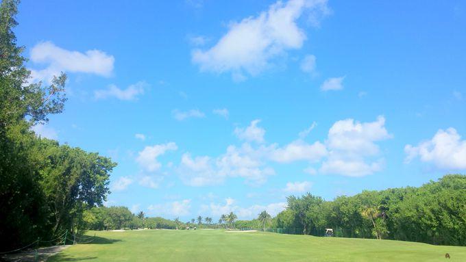 空と緑、水がコースの美しさを強調