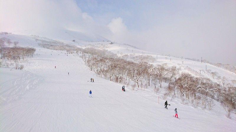柔らかい雪で転んでも安心な初心者コース