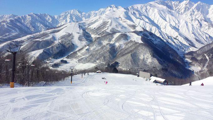 地形活かした人気コース!長野「白馬岩岳スノーフィールド」