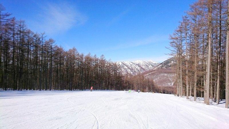 パークが楽しい!長野「湯の丸スキー場」