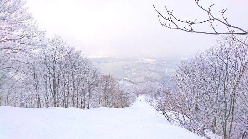 マジ 19 雪