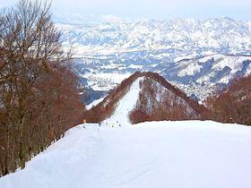 長野「野沢温泉スキー場」初心者、上級者、滑らない人もドンと来い!