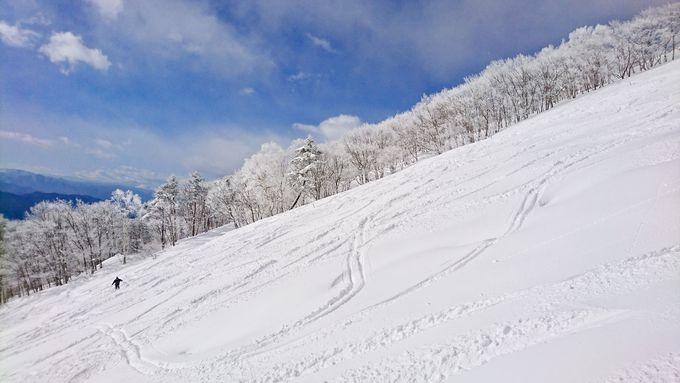 一直線に続くスキー場の人気コース