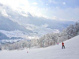 長野「よませ温泉スキー場」抜群の滑り応えと絶景に溜息