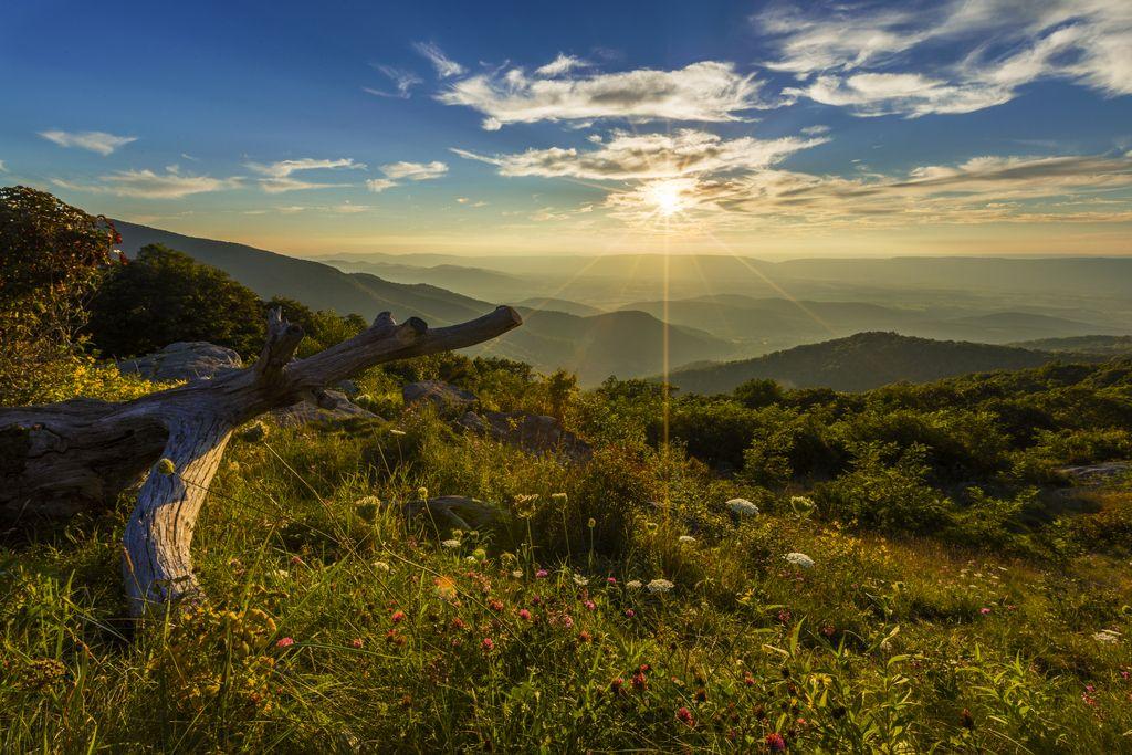 洞窟に絶景ドライブも!バージニア州ルーレイの自然満喫1日プラン