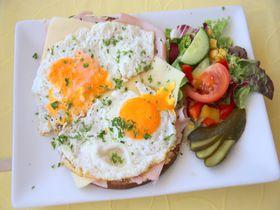 独リューデスハイム「パークカフェ」ライン川を眺めてドイツ料理を