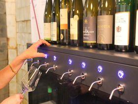 独リューデスハイム「ラインヴァインヴェルト」ワインに賭ける?