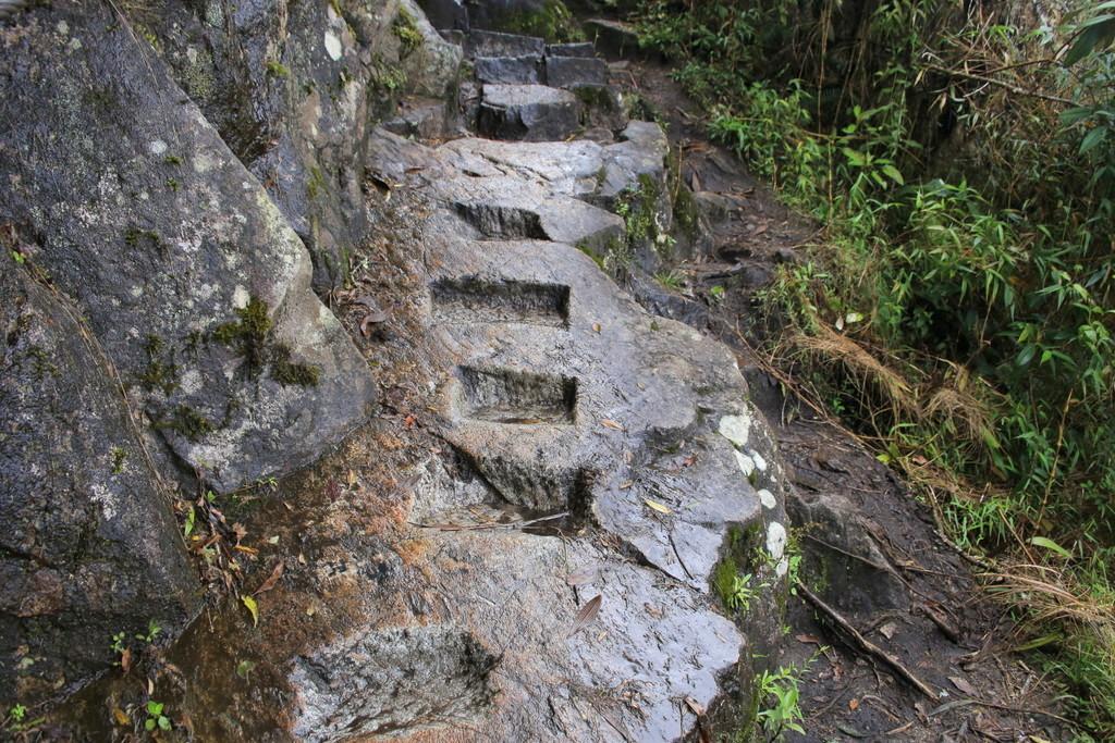 上り坂というより階段を上がる道のり