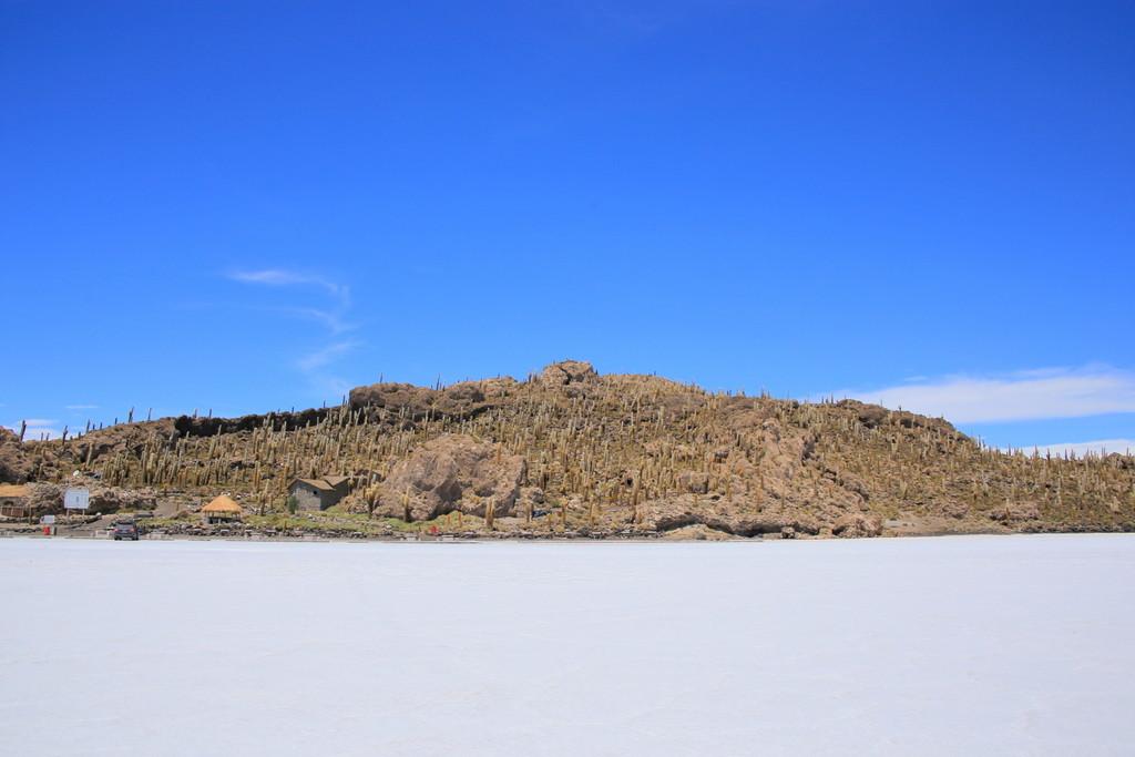 塩の大地に突如現れる茶色の島