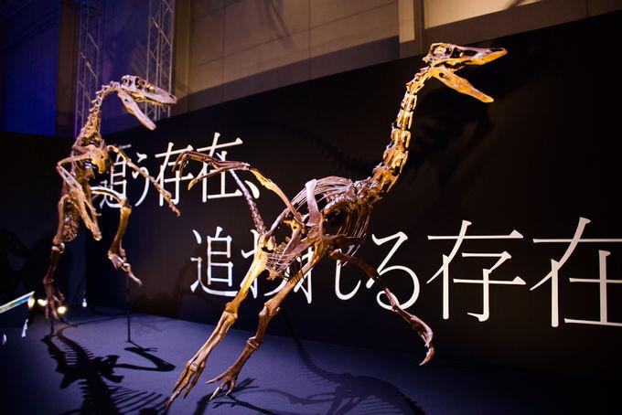 恐竜たちが暮らす世界に没入