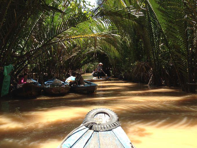 まるで冒険!手漕ぎ船で進むヤシの木のトンネル