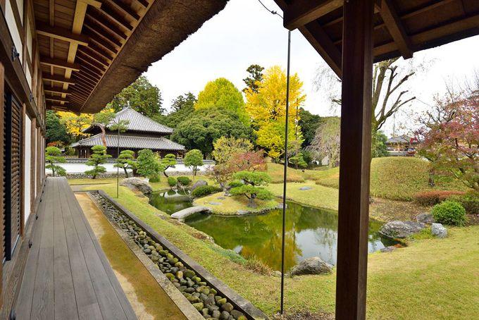 足利学校での学校生活と日本遺産のテーマ「学ぶ心の本源」