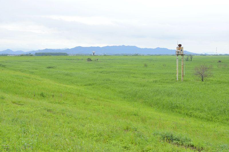 第2調節池の広場から見る広大な湿地