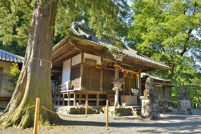 白瀧神社〜桐生織の発祥地とされる古社