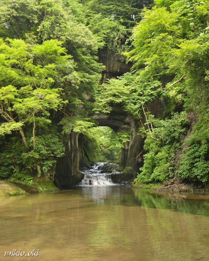 幻想の世界への入口・濃溝の滝