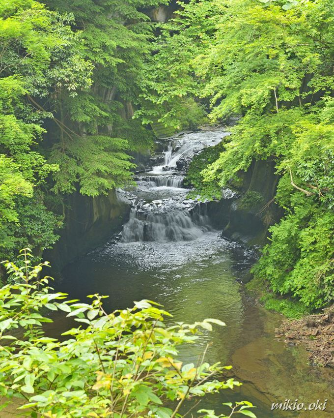 6.「濃溝の滝」房総半島の秘境/千葉
