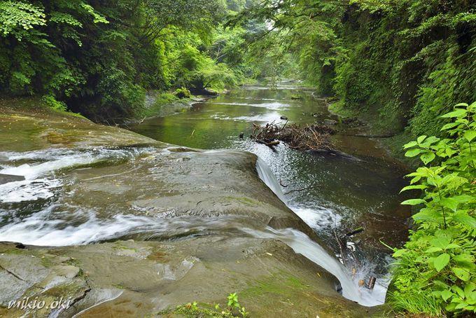 清水渓流公園で見れるもう1つの滝