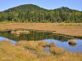 奥鬼怒の秘境・鬼怒沼湿原〜天空の湿原と温泉を満喫するトレッキング