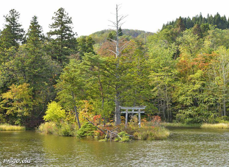 山形県・大沼の浮島〜国指定名勝の小島が浮遊する神秘の沼