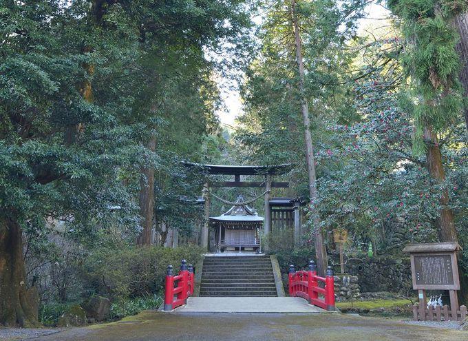 埼玉県最北の山・御嶽山に鎮座する金鑚神社