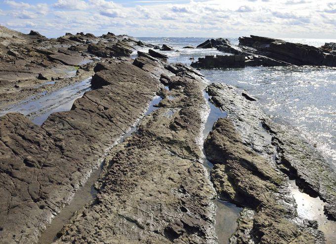 西明浦へ続く遊歩道〜太古の地層の岩畳に触れる