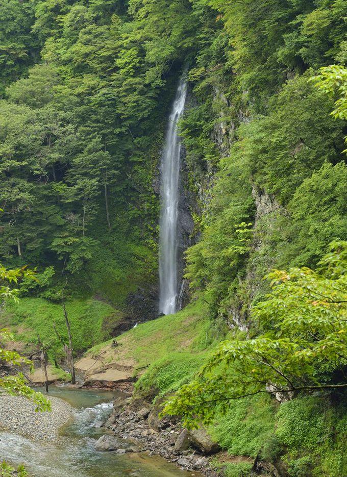 回顧の滝〜吊橋と観瀑台からの雄大な眺め