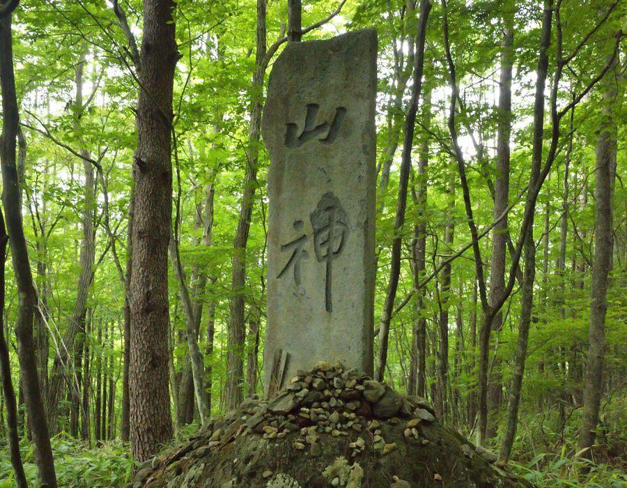 桜沢を行く山道・前山八方ヶ原線歩道