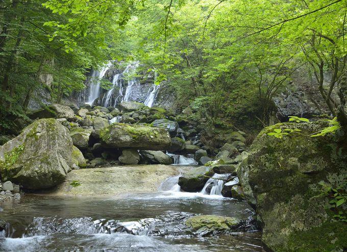 桜沢の名瀑・咆哮霹靂の滝