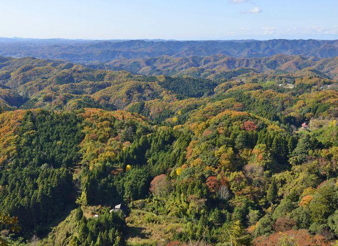 西金砂神社〜常陸太田の霊山・西金砂山に鎮座する古社