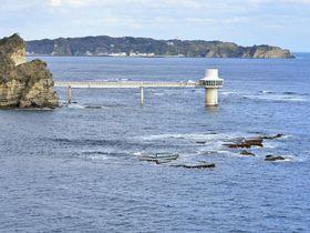 千葉勝浦で巡る絶景の岬と神秘の海底〜鵜原理想郷と海中展望塔