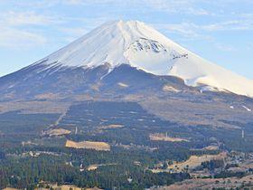 富士山の間近に聳える大展望の峰〜絶景の静岡越前岳へ登山