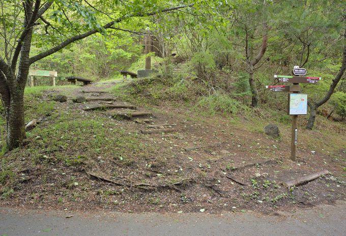 ハイキングルート案内〜登山口から下山の分岐点